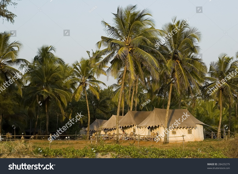 Palm Bungalow Part - 33: Bungalow In A Palm Grove