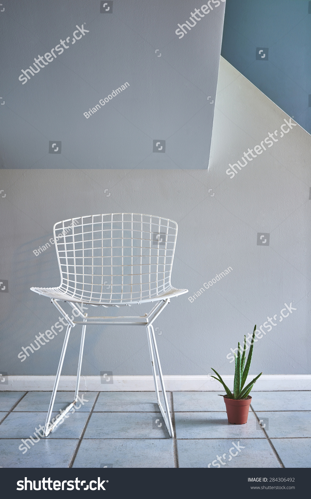 A Modern Mid Century Wire Chair And A Potted Plant