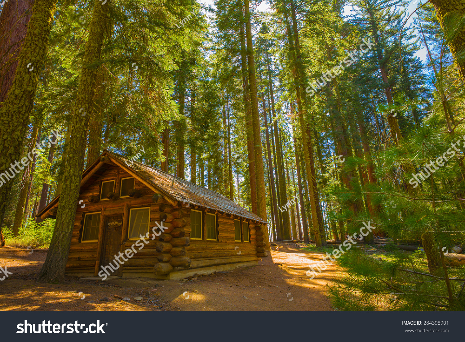 now cabins california howstuffworks in winter national iconic falls after park storm tunnel tree htm sequoia intense