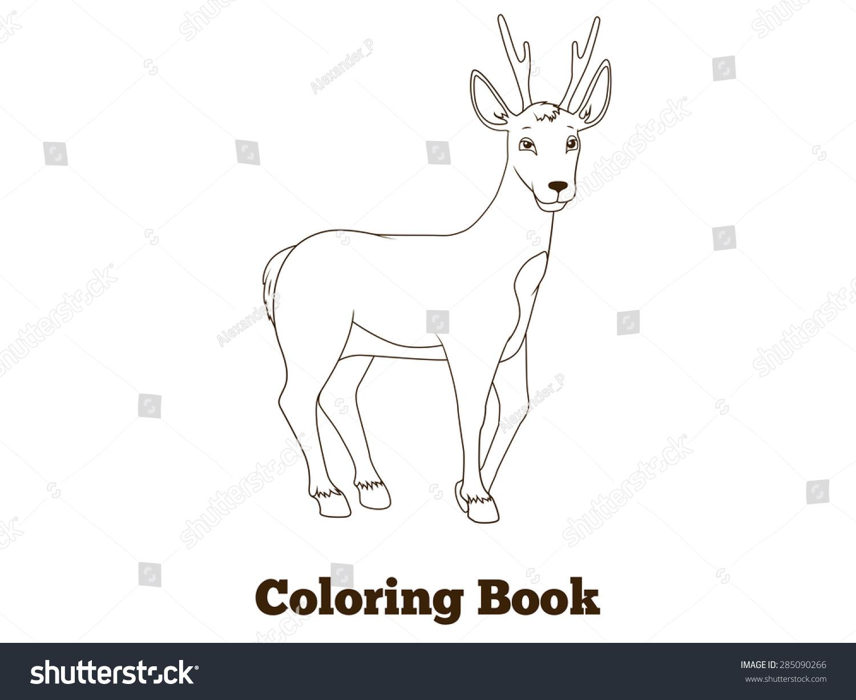 Coloring Book Forest Animal Roe Deer Cartoon For Children Vector Illustration