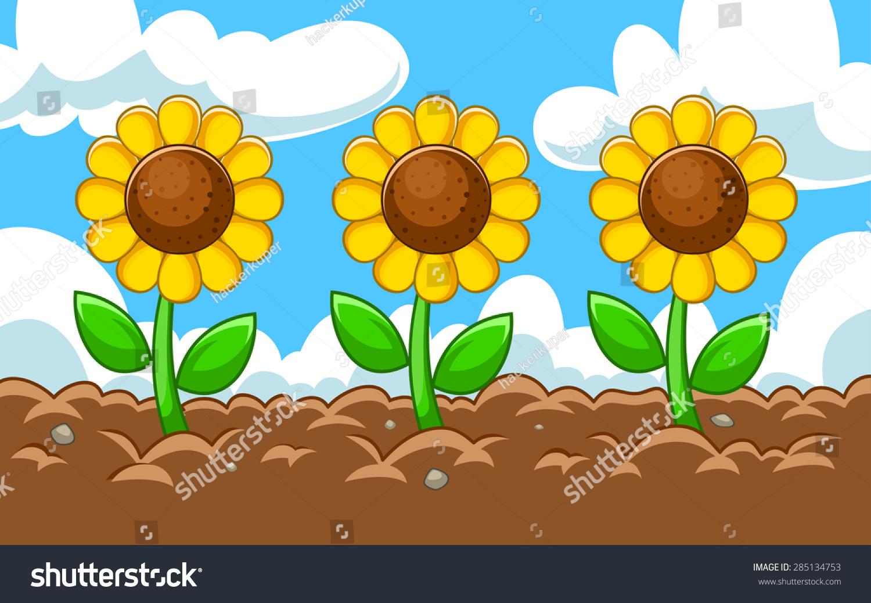Vector Sunflower Cartoon Garden Stock Vector 285134753