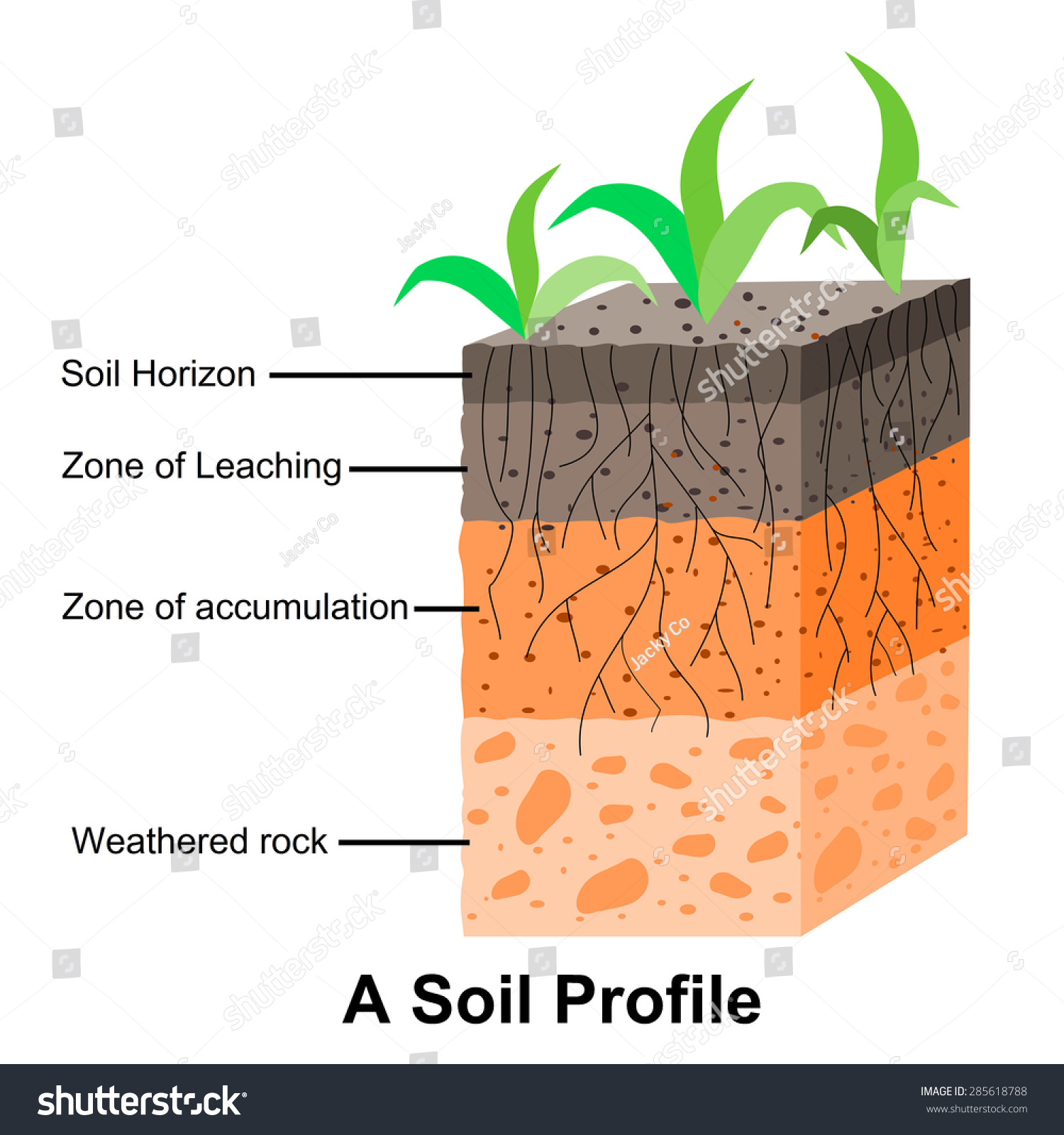Soil formation soil horizons stock vector 285618788 for Soil forming minerals