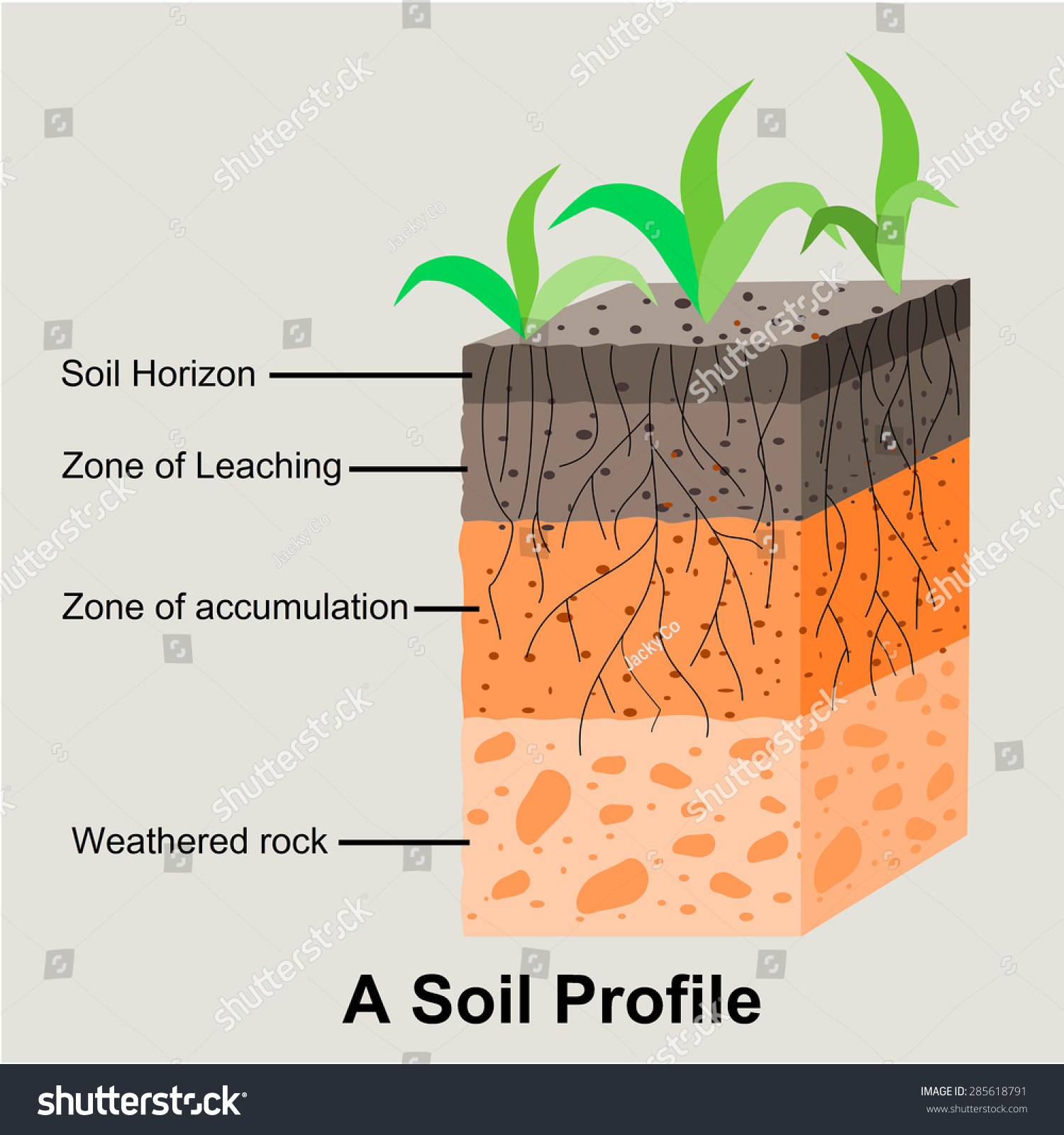 Soil formation soil horizons stock vector 285618791 for Why the soil forms layers in water