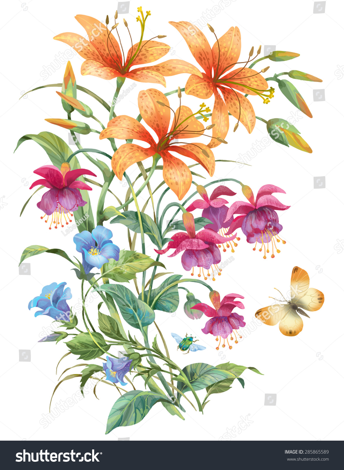 Floral composition different flowers herbs isolated stock floral composition of different flowers and herbs isolated on white background lilies and fuchsias izmirmasajfo