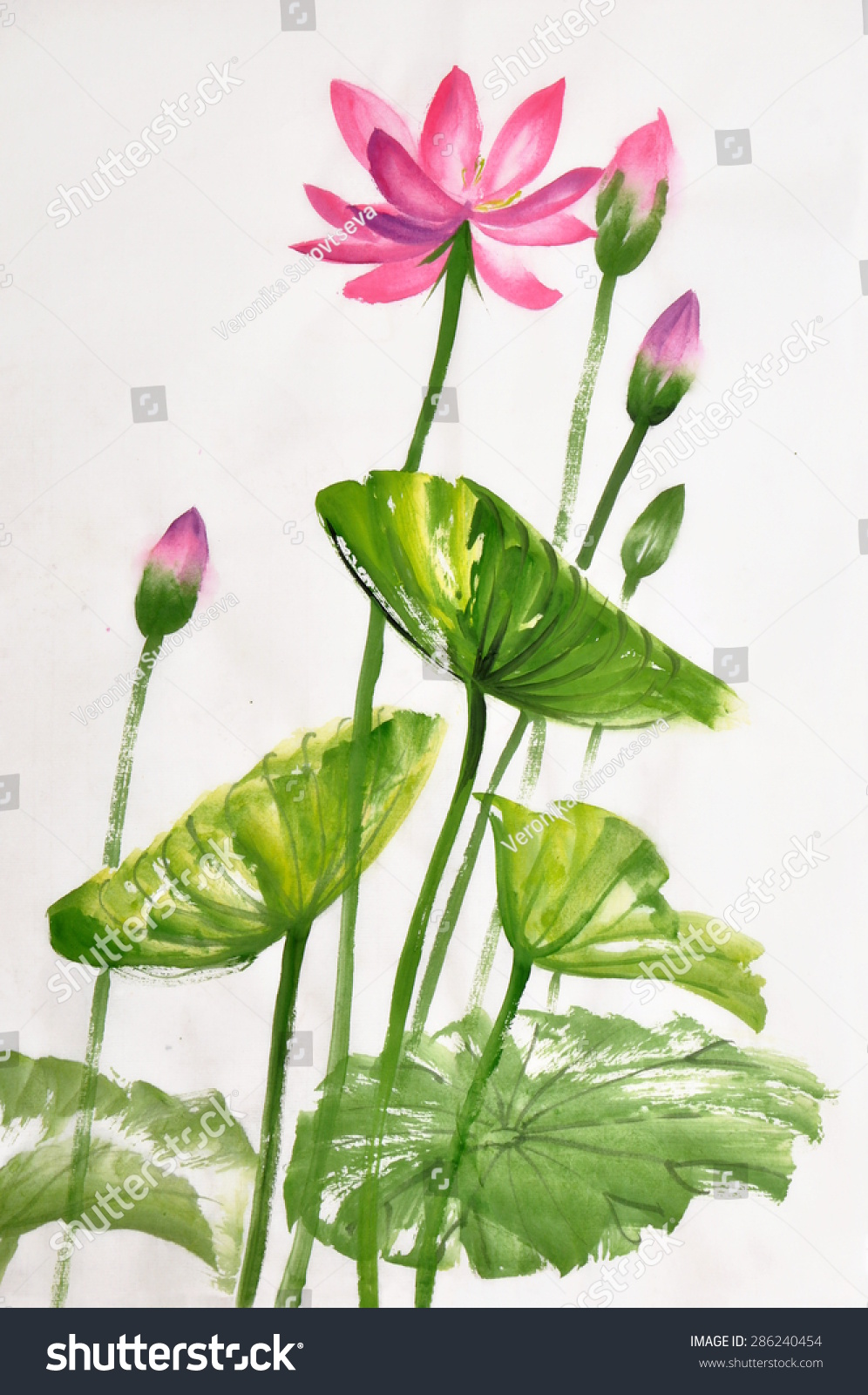 Lotus Flower Watercolor Painting On Rice Stock Illustration