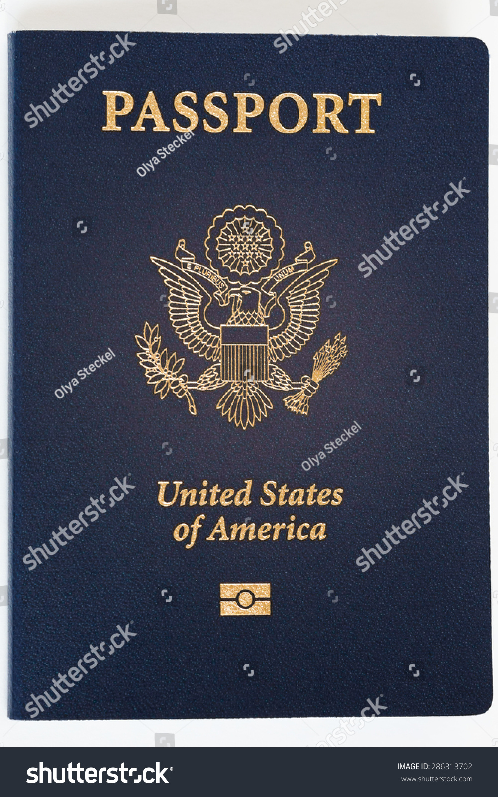 Usa American International Passport Traveling Abroad Stock ...