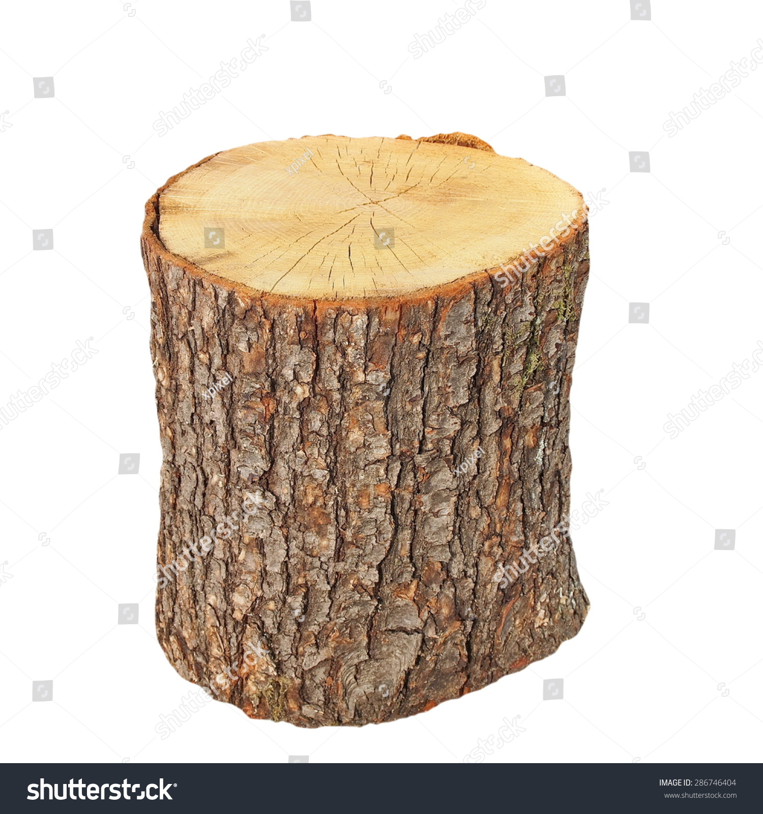 oak stump  stump log fire wood isolated on white tree stump clipart png tree stump clipart