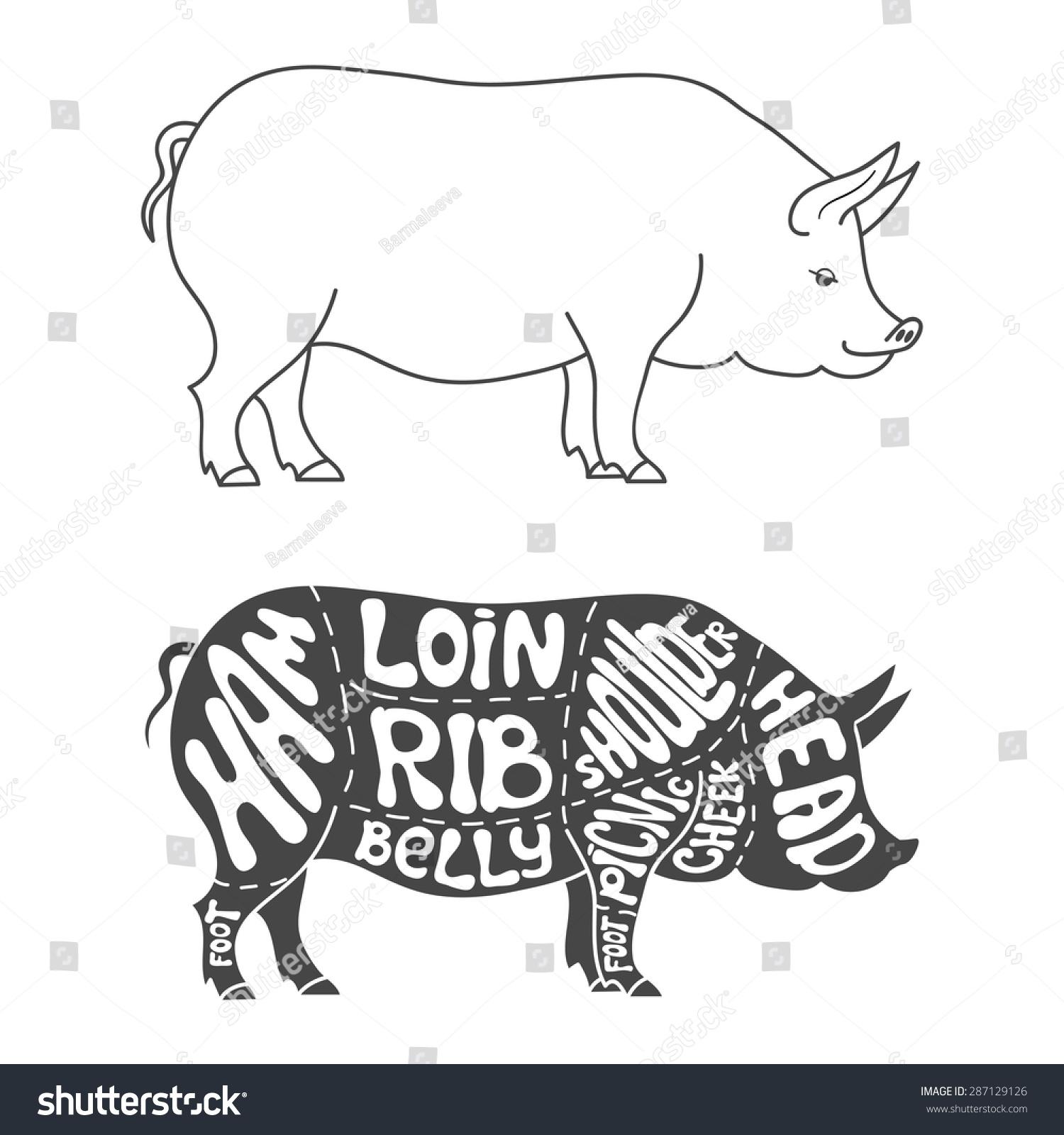 Pork Cuts Diagram Hand Drawn Butcher Stock Vector 287129126 ...
