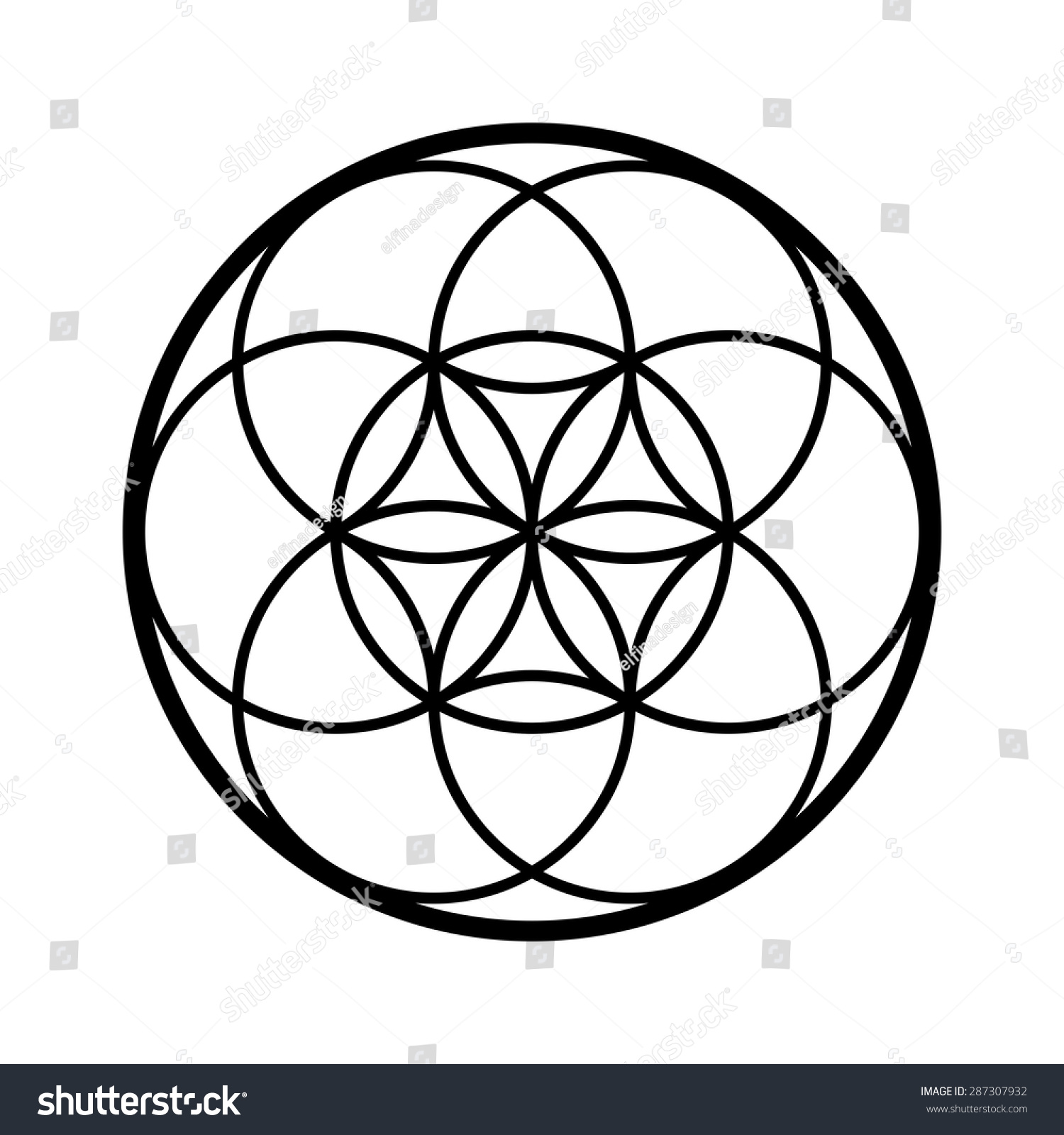 seed life vector sacred geometry symbol stock vector 2018 rh shutterstock com sacred geometry vector set meaning sacred geometry vector free download