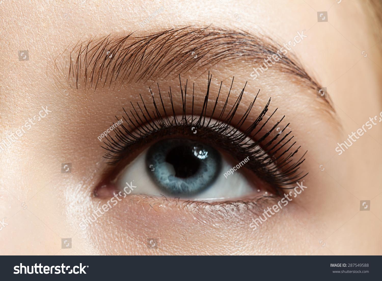 closeup makeup eye long eyelashes brown stock photo