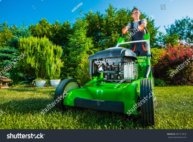 Landscaping Business Gardener Mowing Backyard Lawn Stock Photo 287712818    Shutterstock