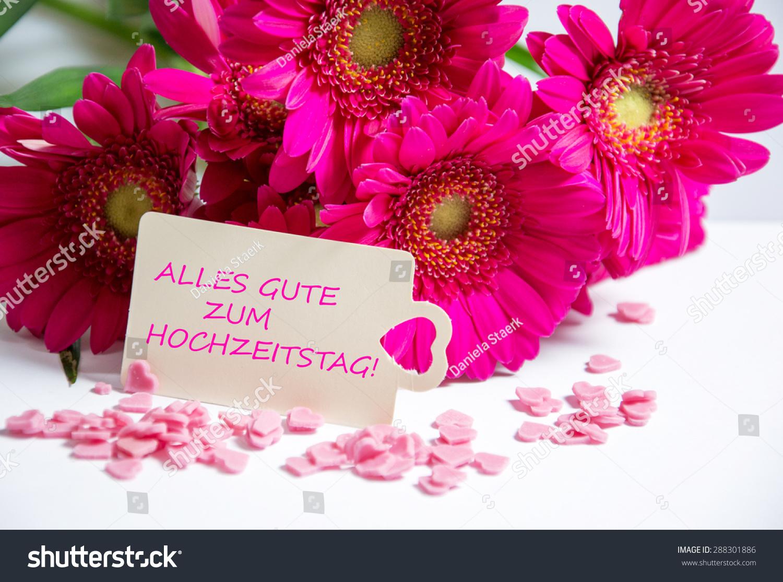Happy Wedding Anniversary Wishes Stock Photo Edit Now 288301886