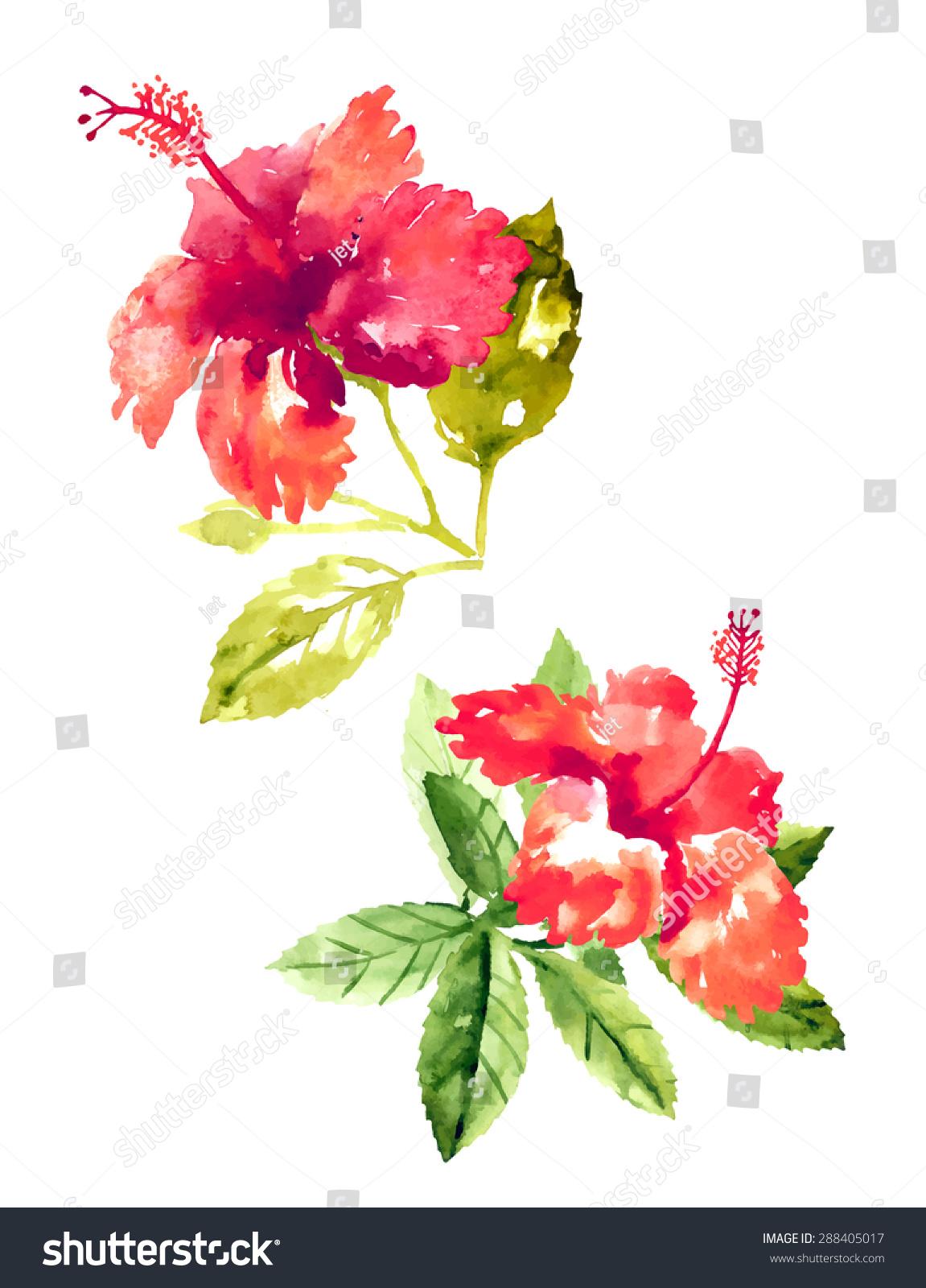 Set of red watercolor hibiscus flowers ez canvas izmirmasajfo