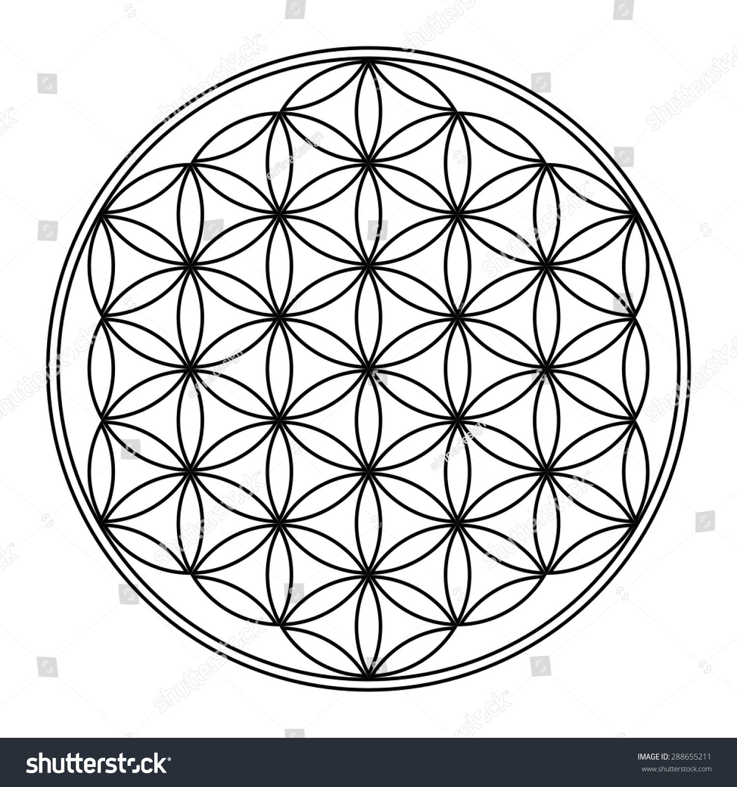 flower life vector sacred geometry spiritual stock vector 2018 rh shutterstock com flower of life vector ai flower of life vector pattern