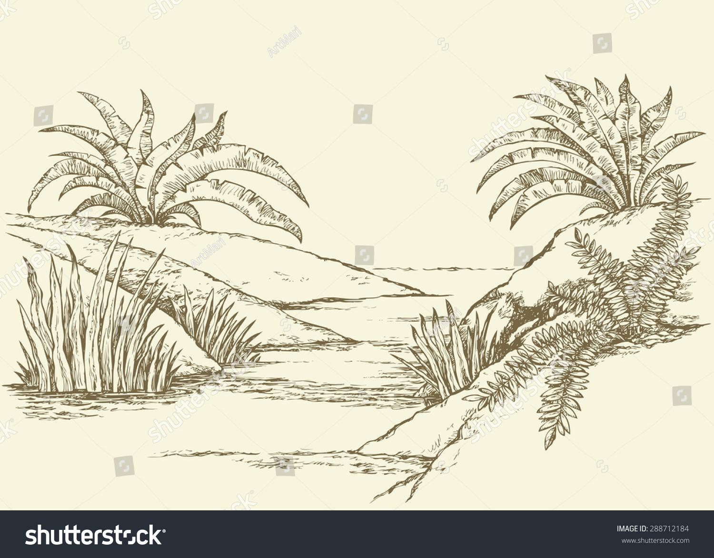 1803 - Small Rivulet - Geometridae - Perizoma alchemillata ...
