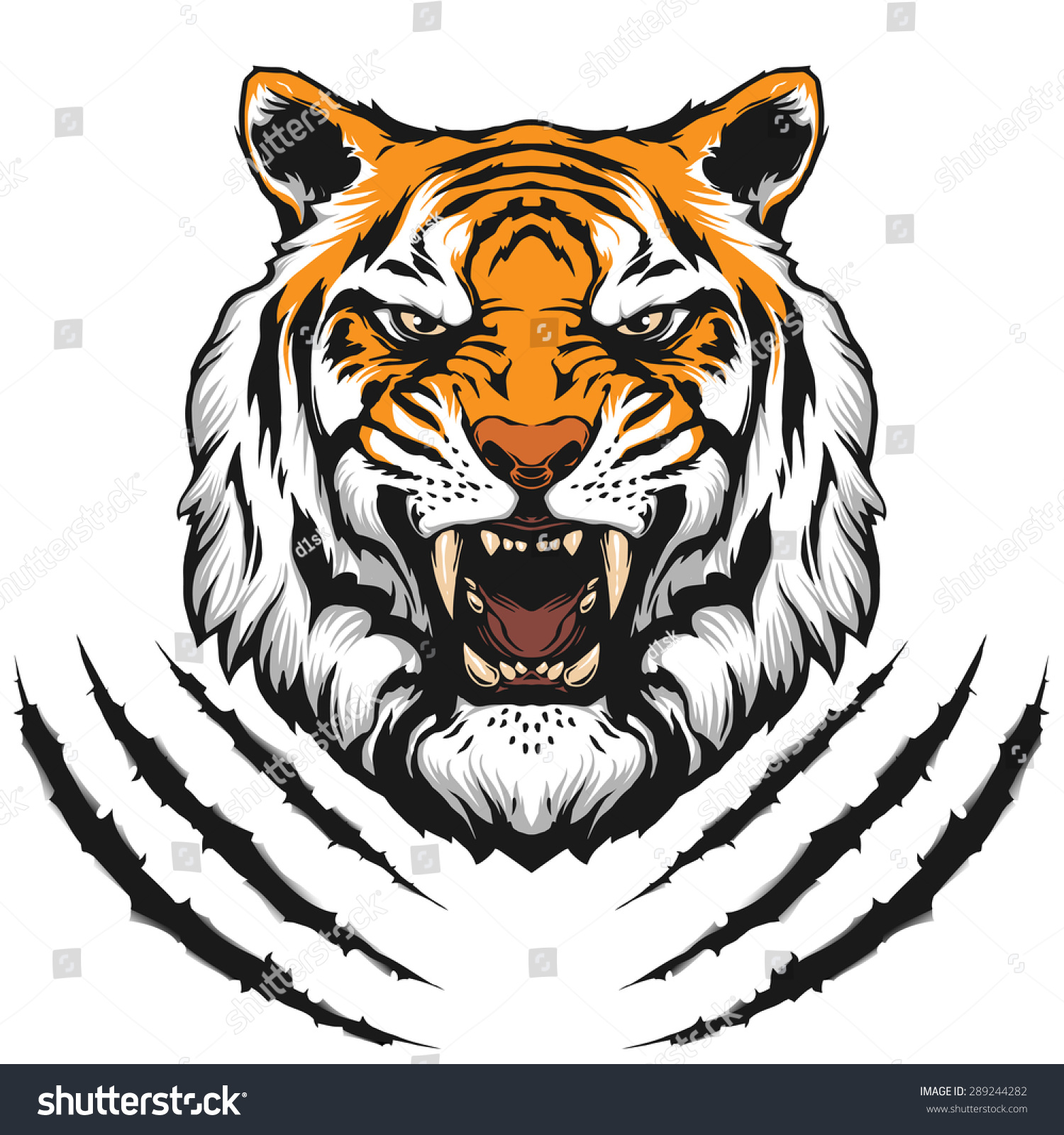 Tiger roar vector - photo#2