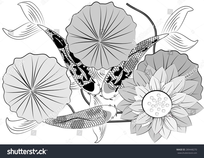 Vector Koi Fish Lotus Flowercolorful Koi Stock Vector Royalty Free