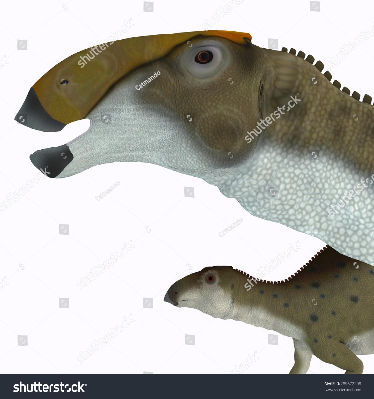 Brachylophosaurus Dino...