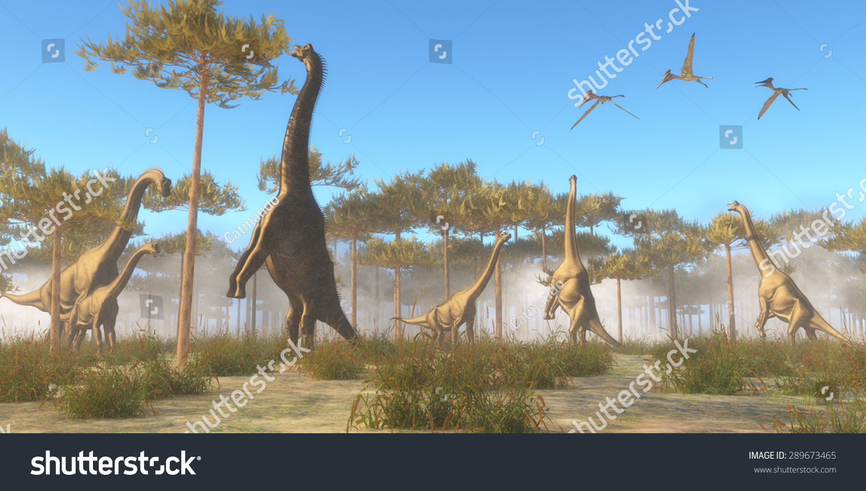 Brachiosaurus Browsing Herbivorous Sauropod Dinosaur That ...