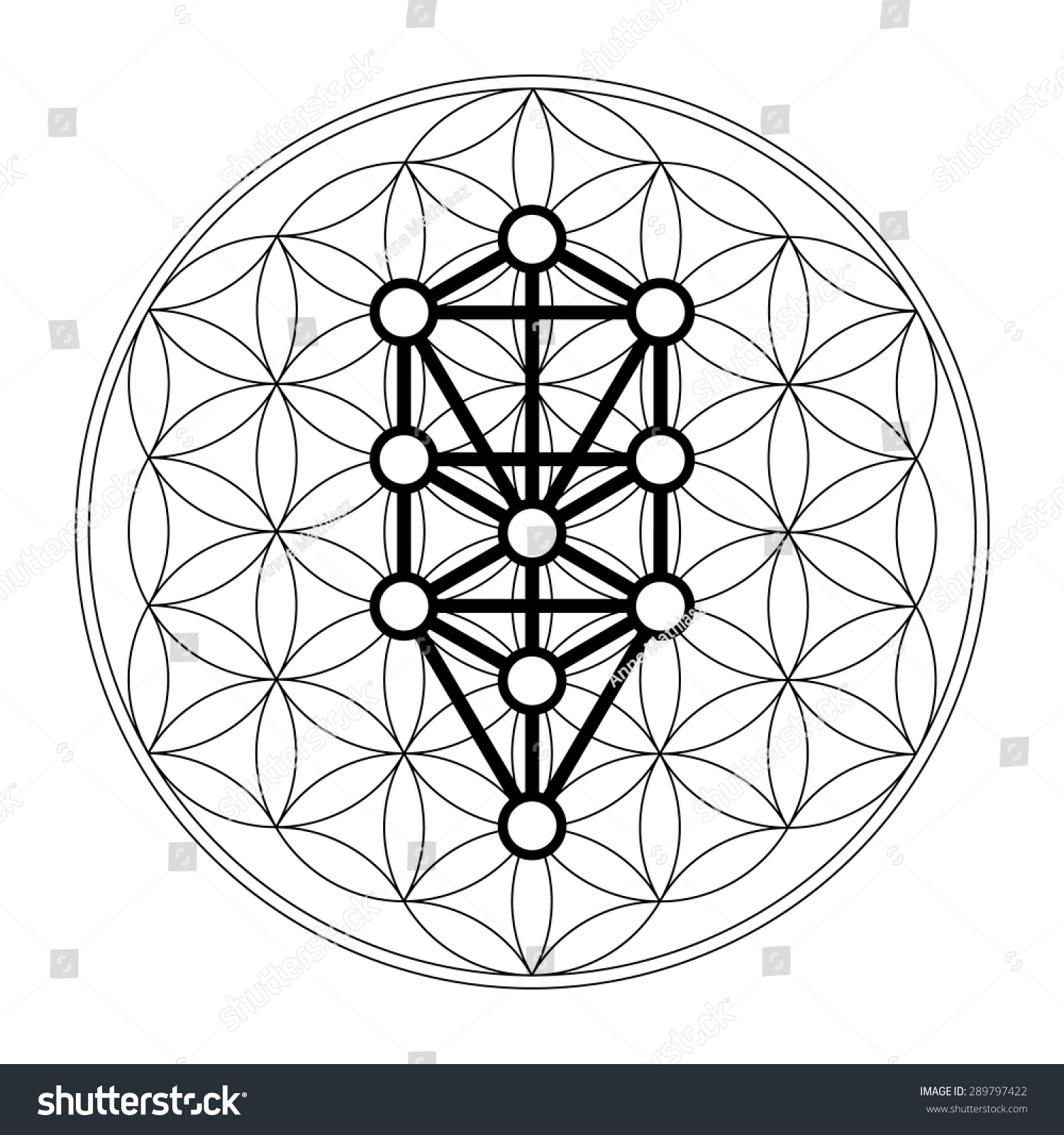 kabbalah 12 sephiroth tree of life flower of life stock vector illustration 289797422. Black Bedroom Furniture Sets. Home Design Ideas