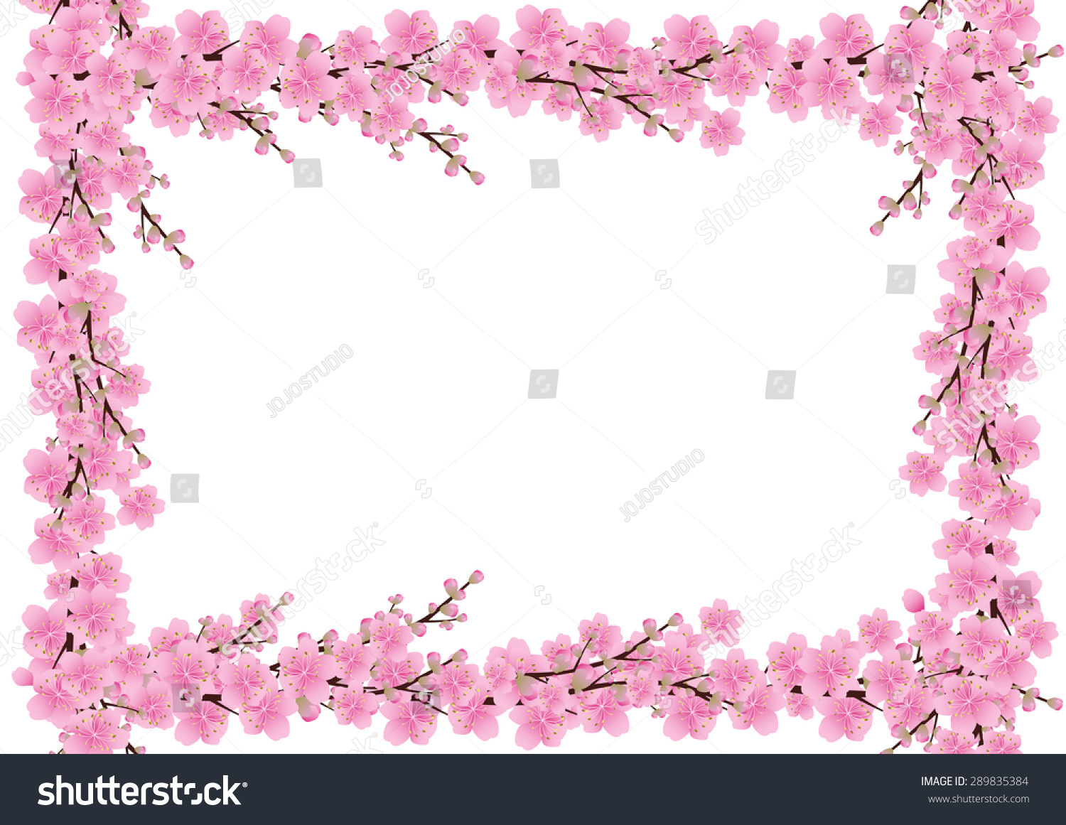 Pink Flowers Spring Background Sakura Cherry Blossom White With Copy Space Isolated Corner Border