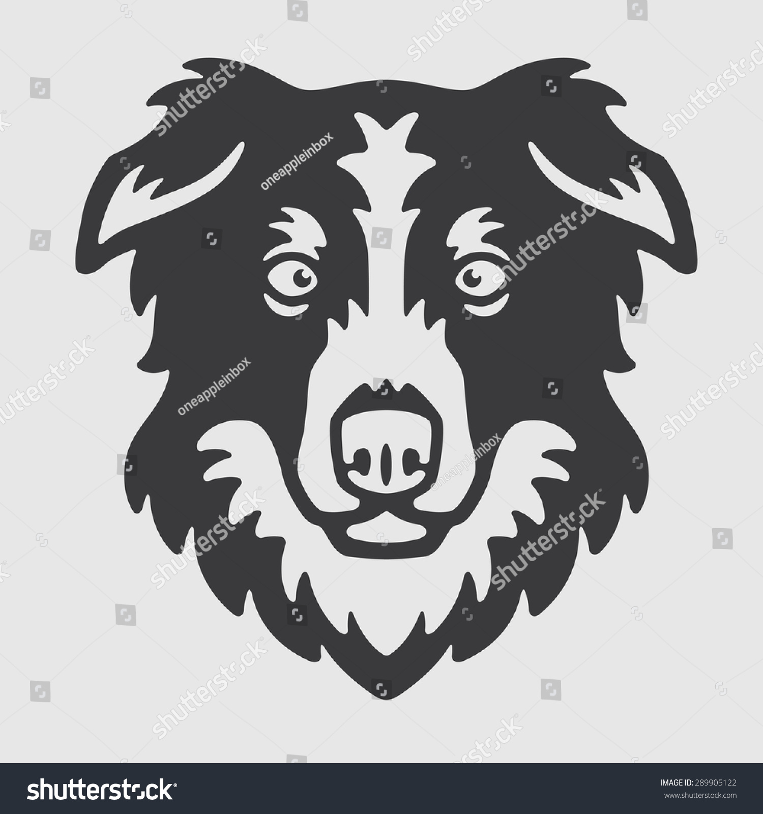 how to draw a border collie head
