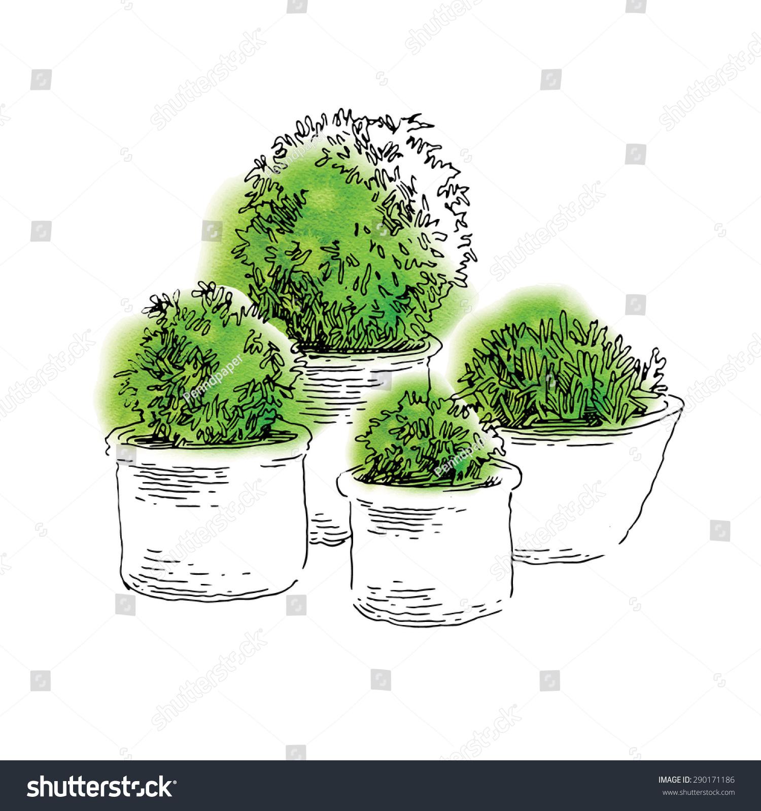flower pots sketch vector line artwork stock vector