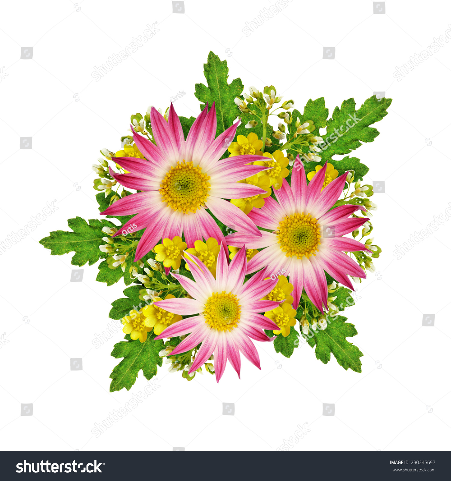 Asters and wild flowers bouquet isolated on white ez canvas id 290245697 izmirmasajfo