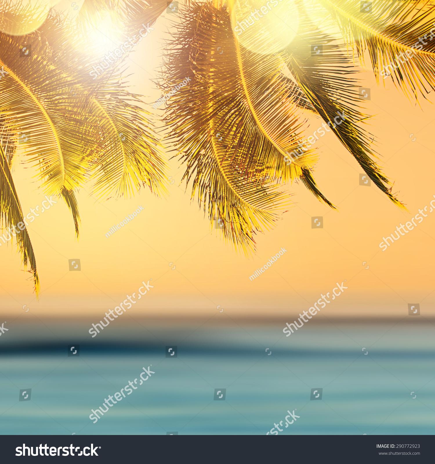 tropical beach landscape design banner background stock photo