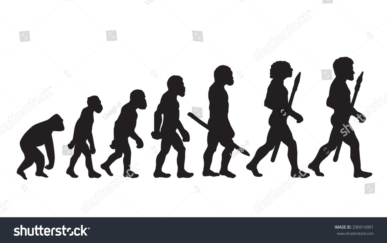 Evolution Vectors Photos and PSD files
