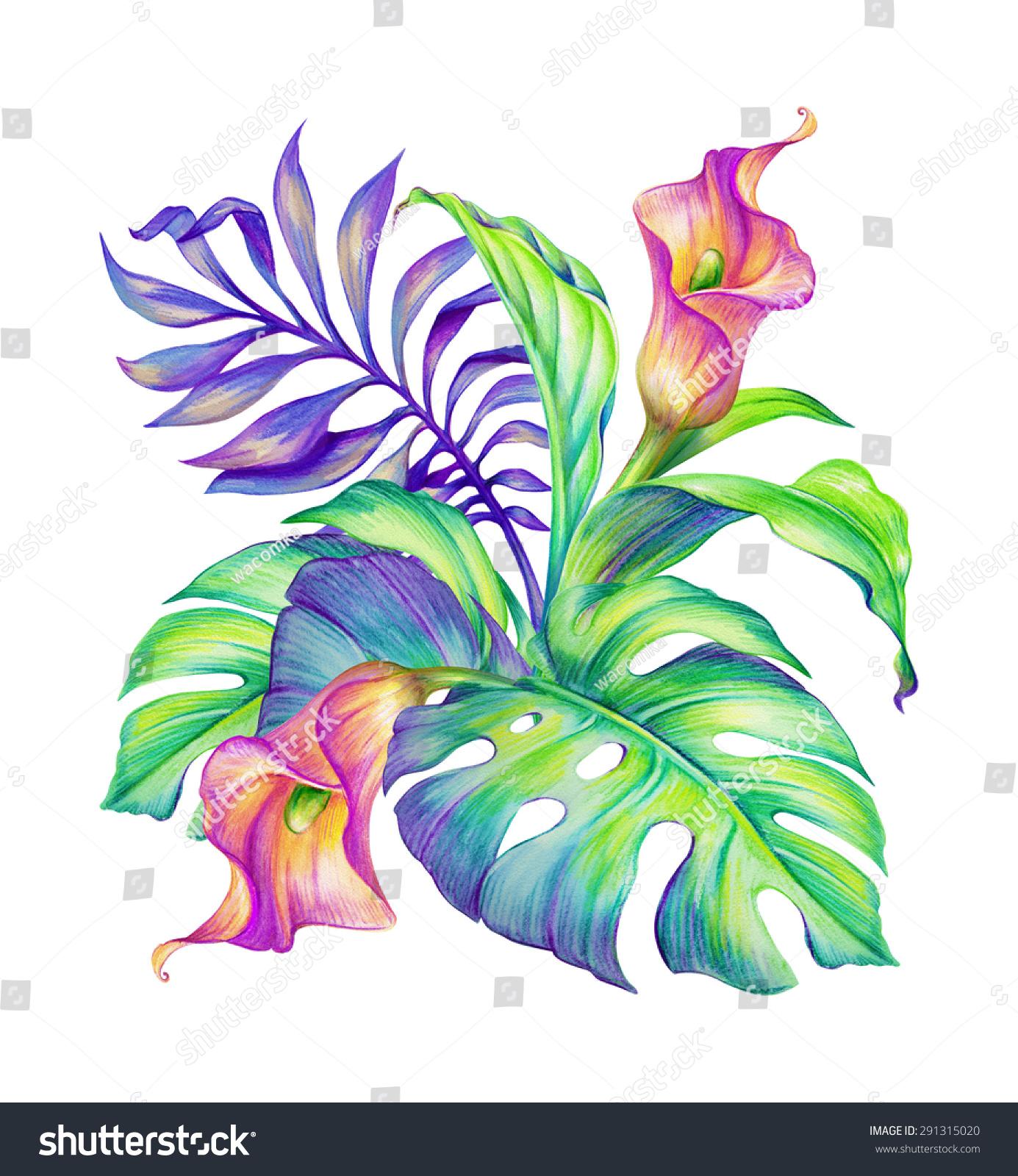 Tropical Floral Arrangement Exotic Flowers Bouquet Stock ...
