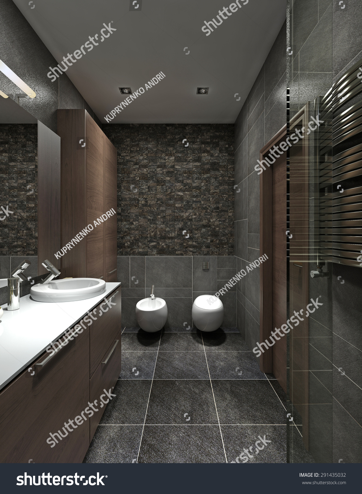 a bathroom in modern style wc bidet and a wardrobe for. Black Bedroom Furniture Sets. Home Design Ideas