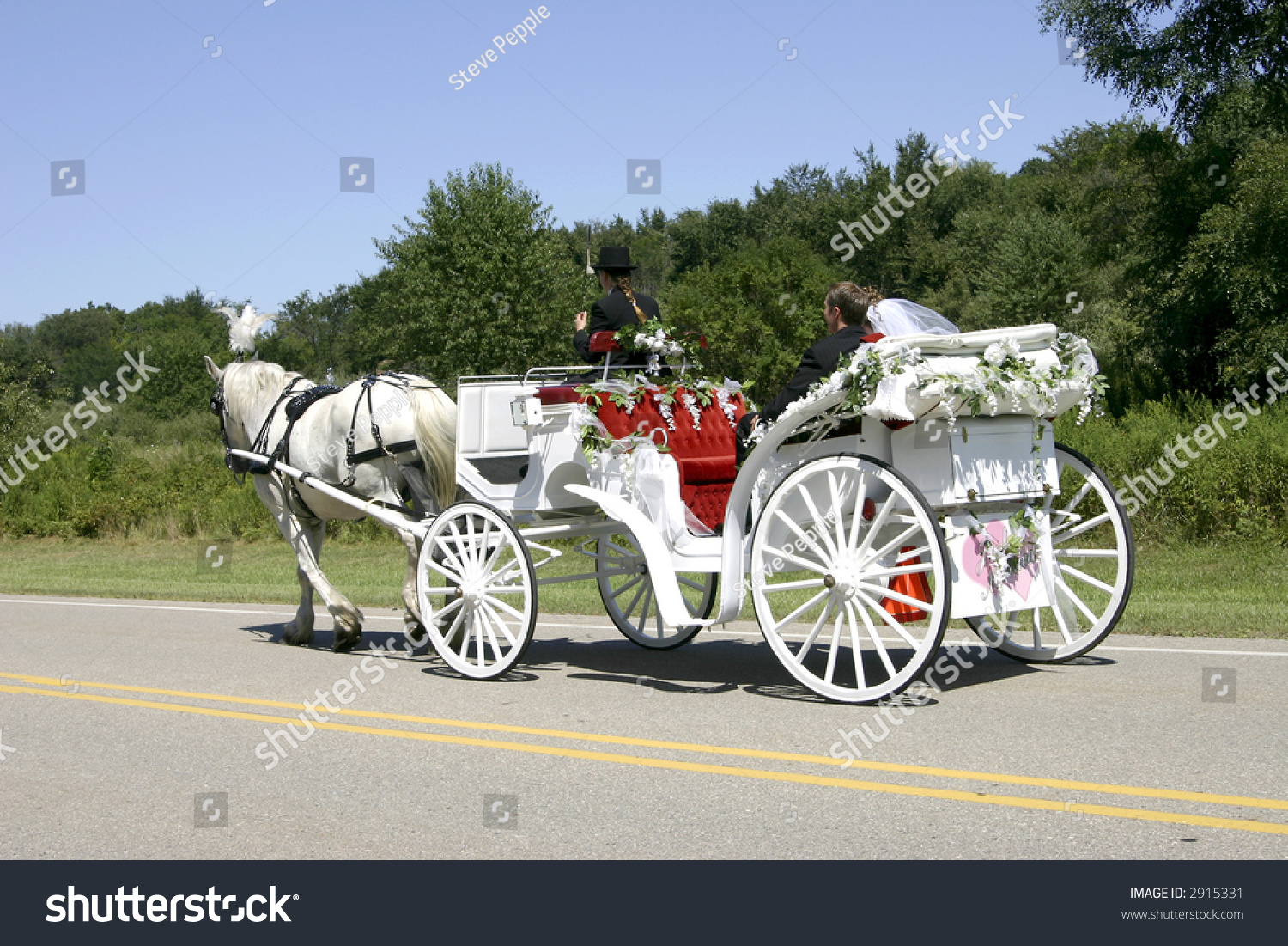 Newlywed Couple White Horsedrawn Open Carriage Stock Photo ...