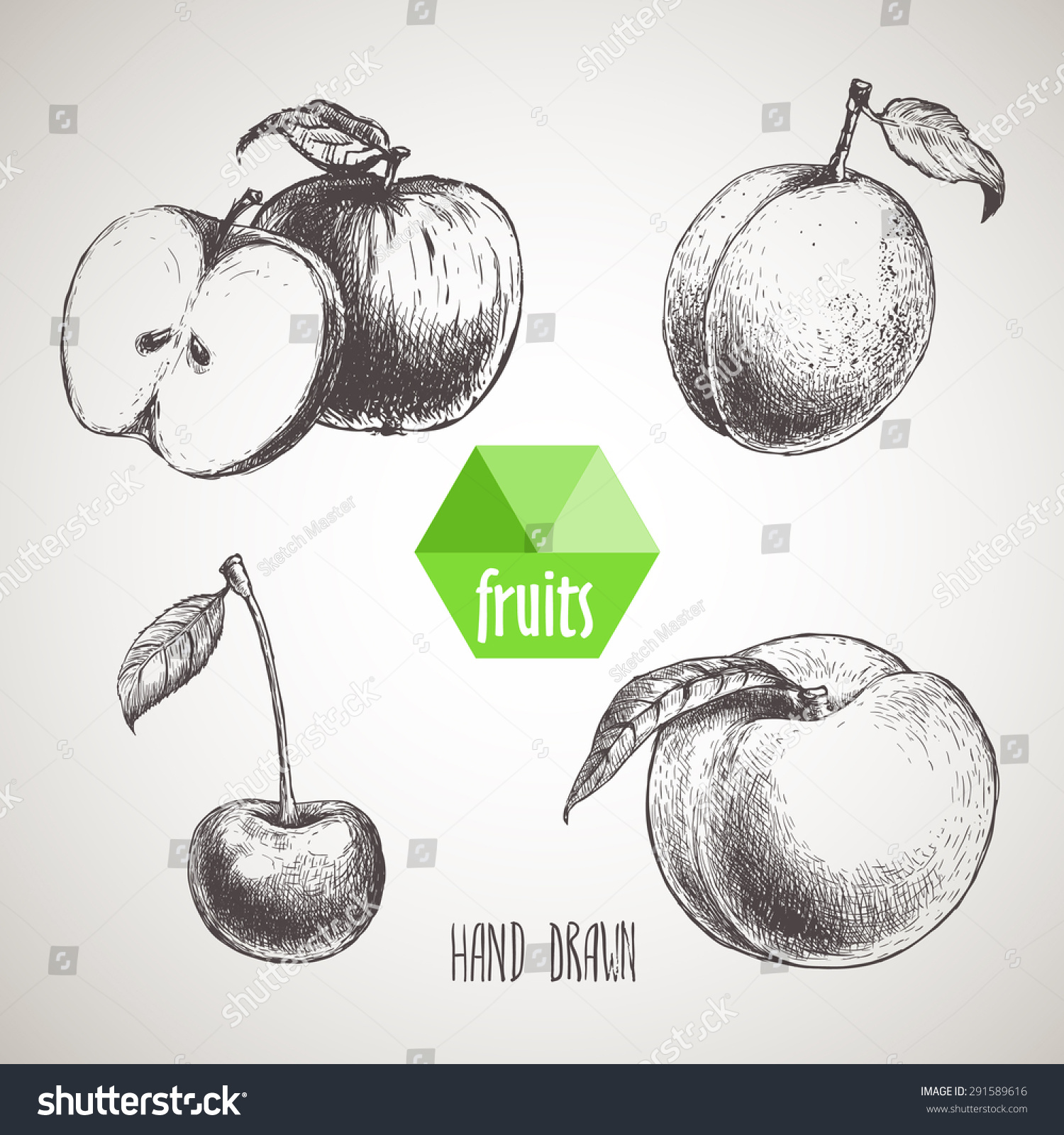 Hand Drawn Sketch Style Fruits Set Stock Vector 291589616 - Shutterstock