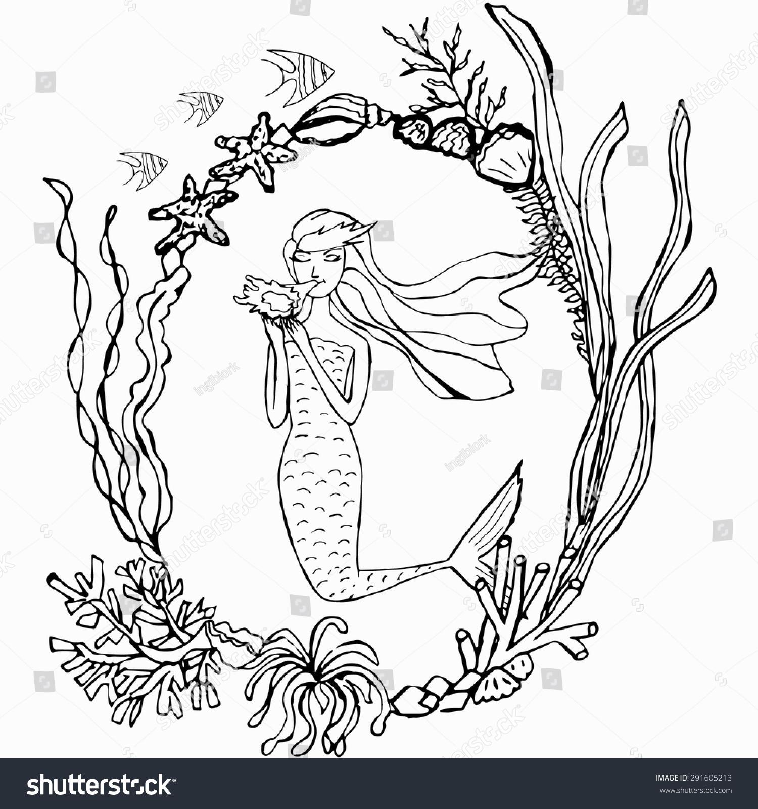 Line Drawing Kelp : Hand drawn mermaid seaweed frame vector stock