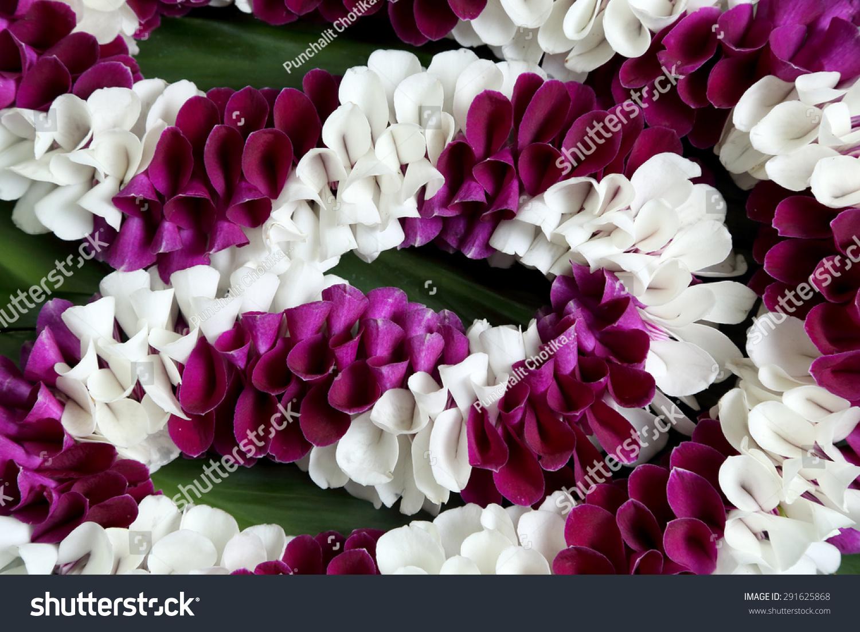 Hawaiian Flowers Lei Necklace Closeup Stock Photo Edit Now