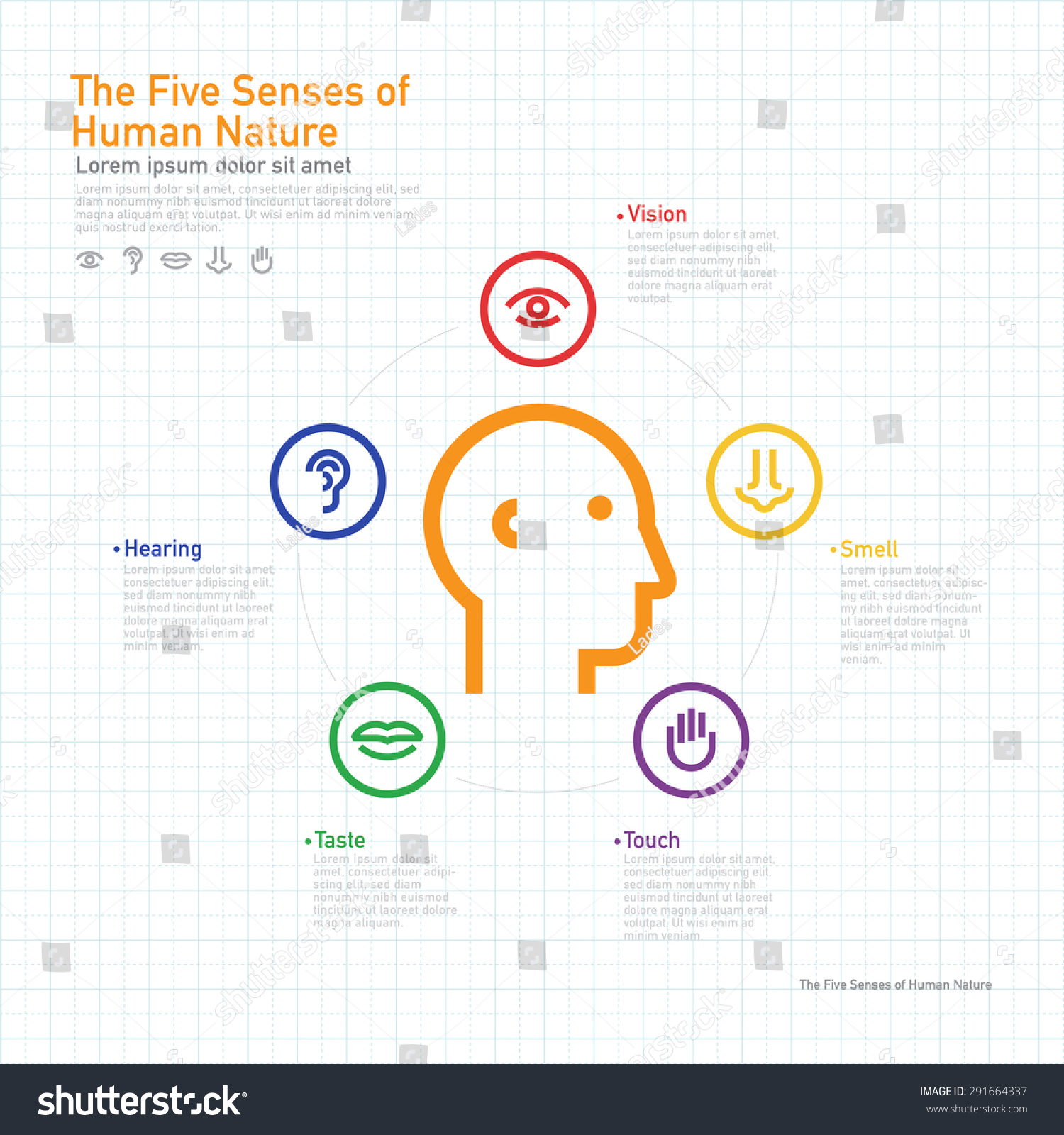 Five senses information concept on human stock vector for 5 senses in architecture