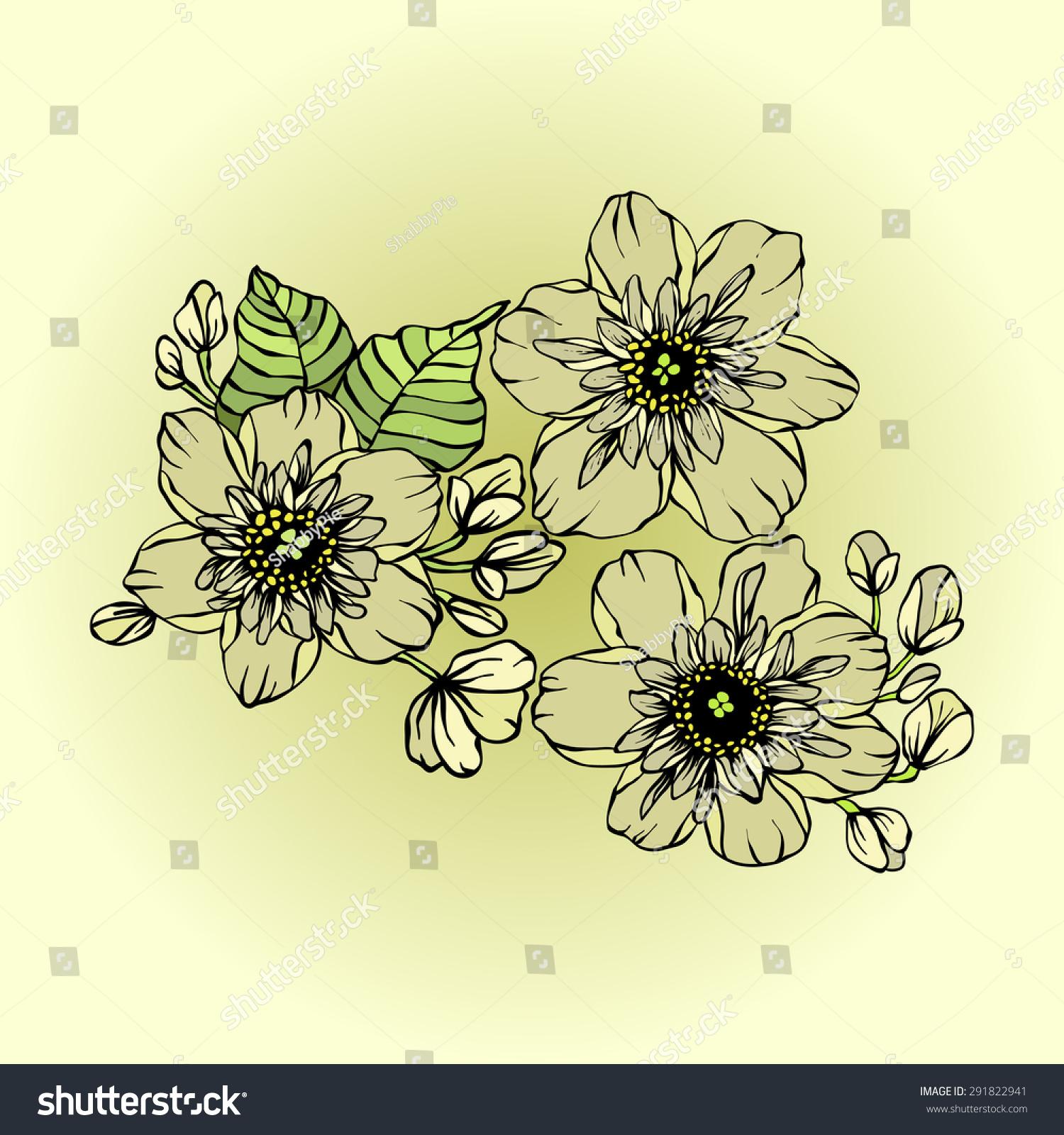 Bunch Jasmine Flowers Vector Illustration Stock Vector 291822941