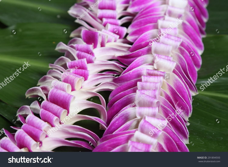 Hawaiian Flowers Lei Necklace Closeup Stock Photo Royalty Free