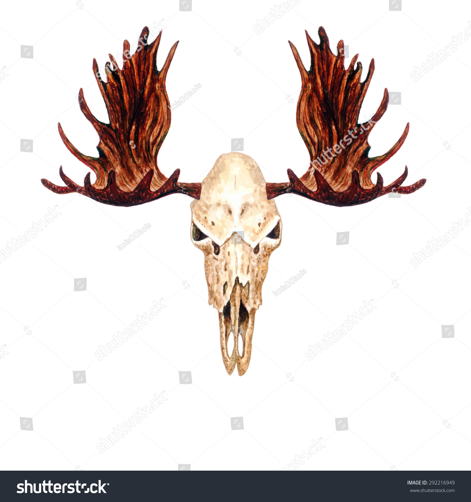 watercolor moose skull isolated on white stock vector 292216949 shutterstock. Black Bedroom Furniture Sets. Home Design Ideas