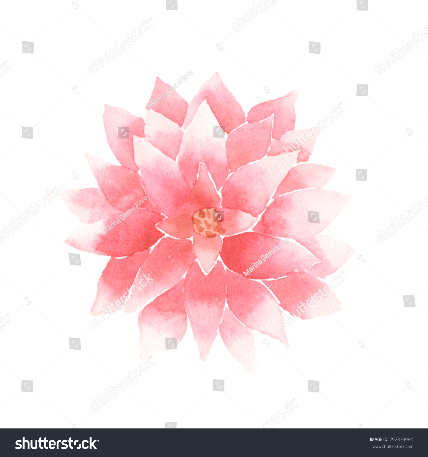 Yoga pattern background seamless pattern with five petals lotus flower - Watercolor Lotus Flower Pink Vector Painted Decorative Element Isolated On White Background Logo Template