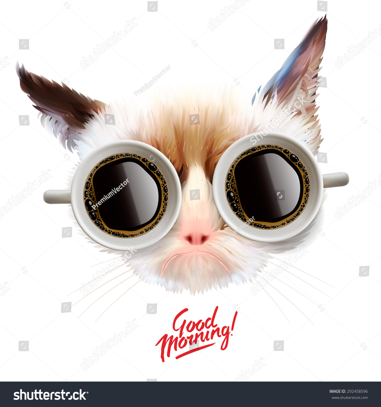 Grumpy Cat With Sunglasses