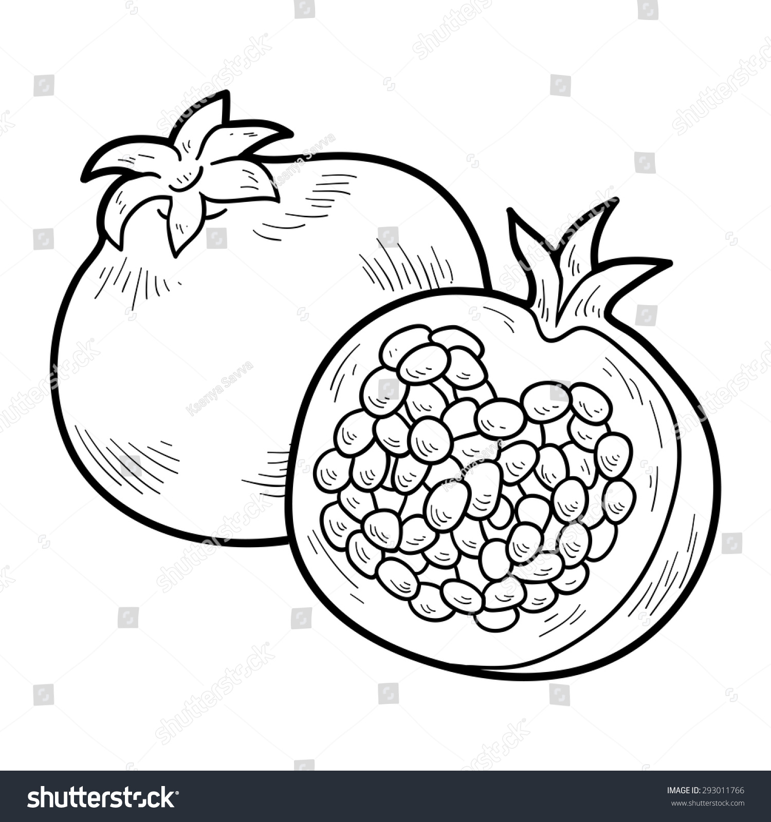 Coloring book pictures of vegetables - Coloring Book Fruits And Vegetables Pomegranate