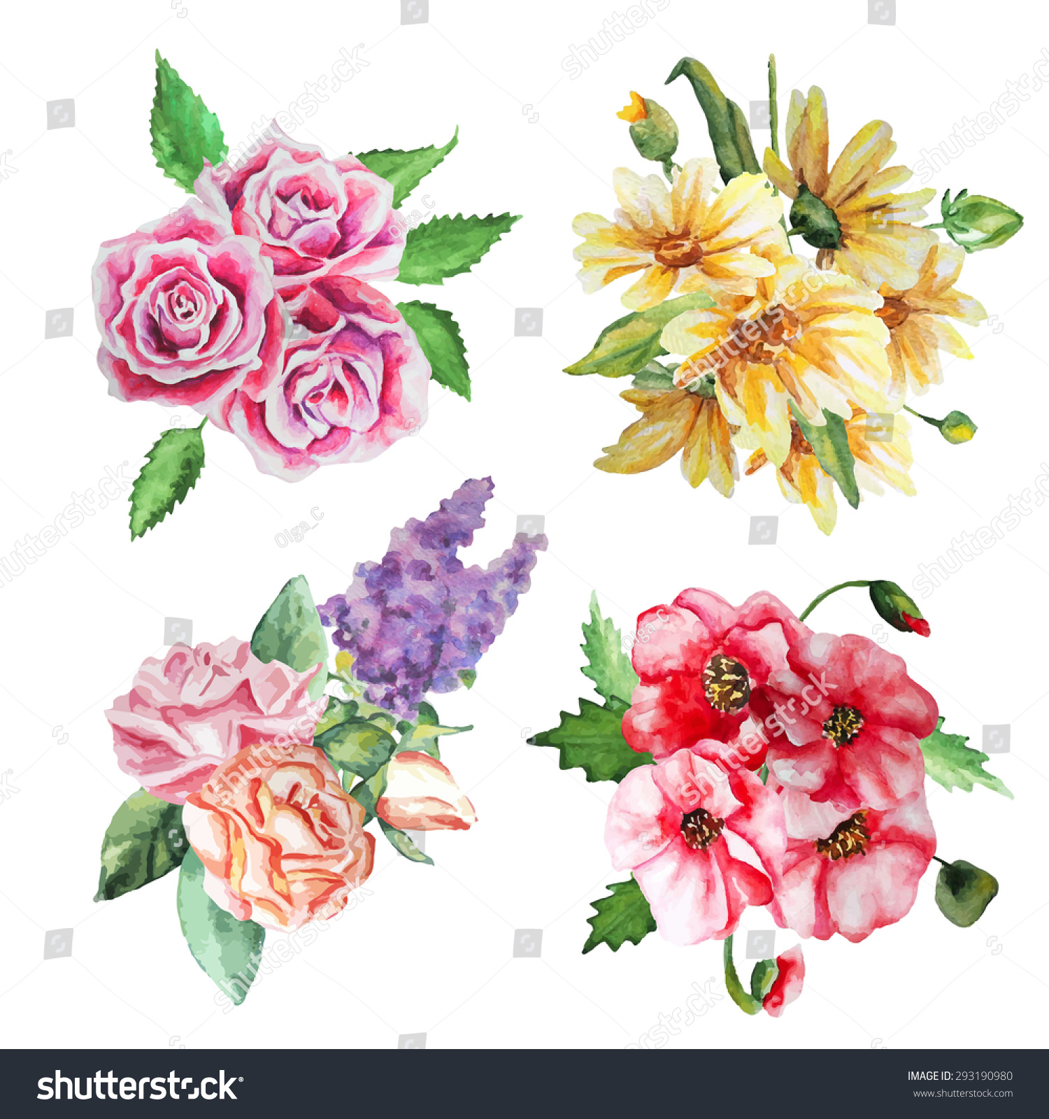 Watercolor Floral Bouquets Bouquet Roses Poppies Stock Vector (2018 ...
