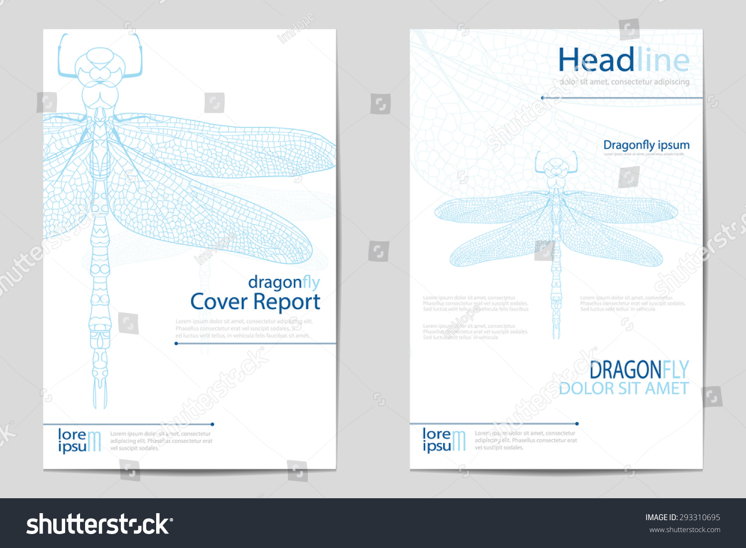 Brochure Booklet Flyer Or Book Cover Template Vector : Set brochure templates dragonfly blue color stock vector