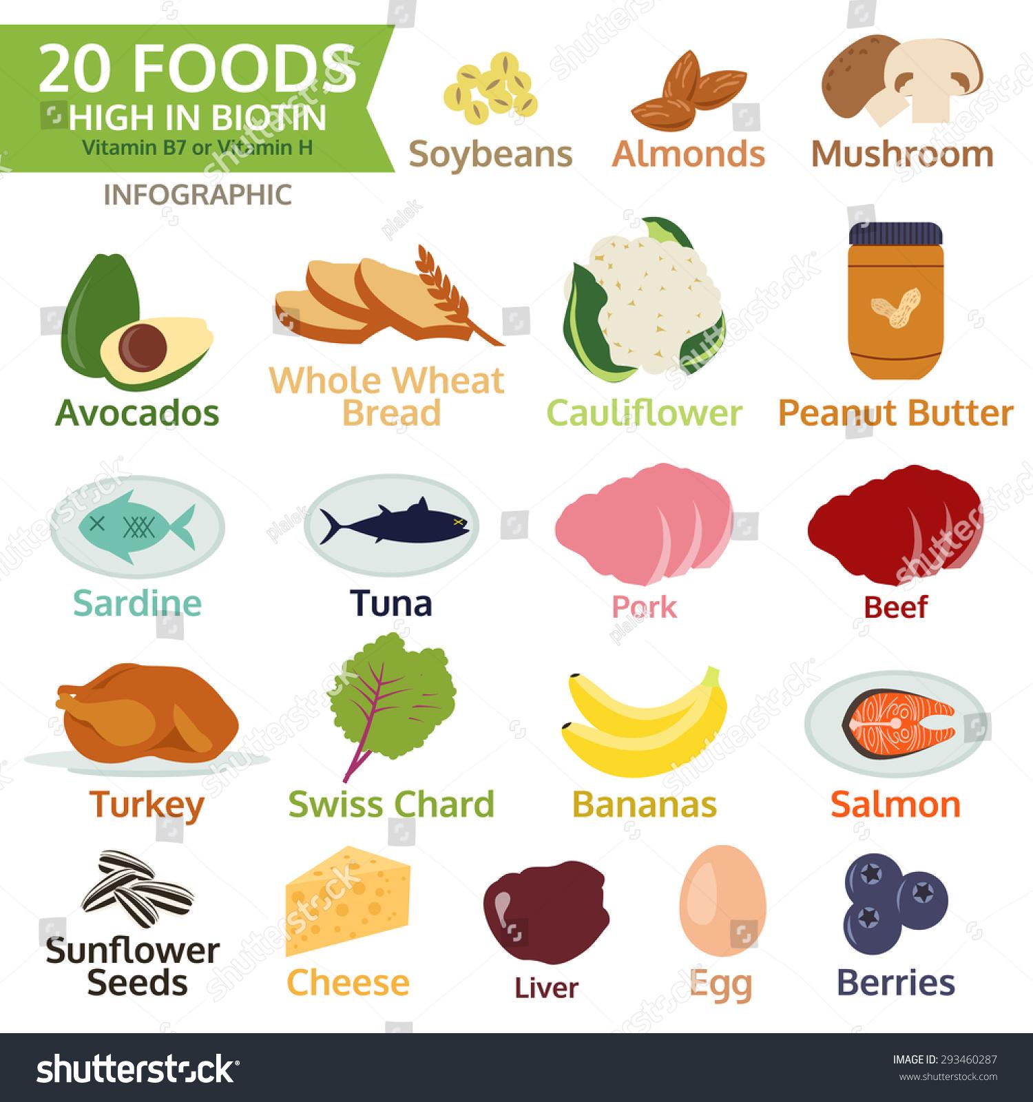 Twenty Foods High Biotin Vitamin B Stock Vector 293460287 ...
