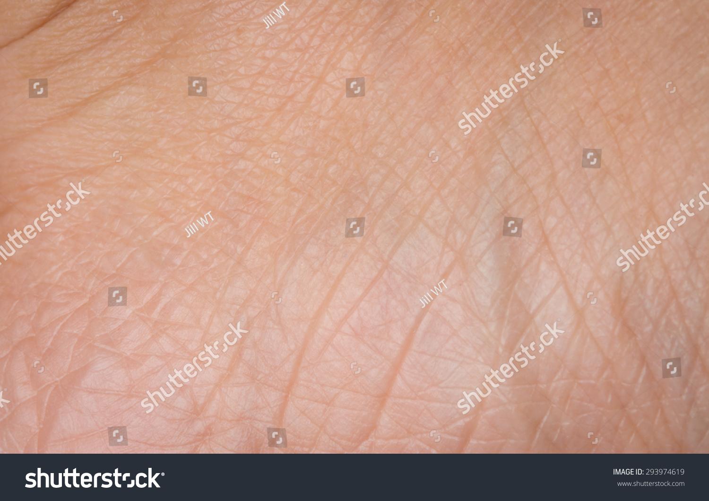 human skin texture macro stock photo 293974619 human skin texture macro stock photo 293974619