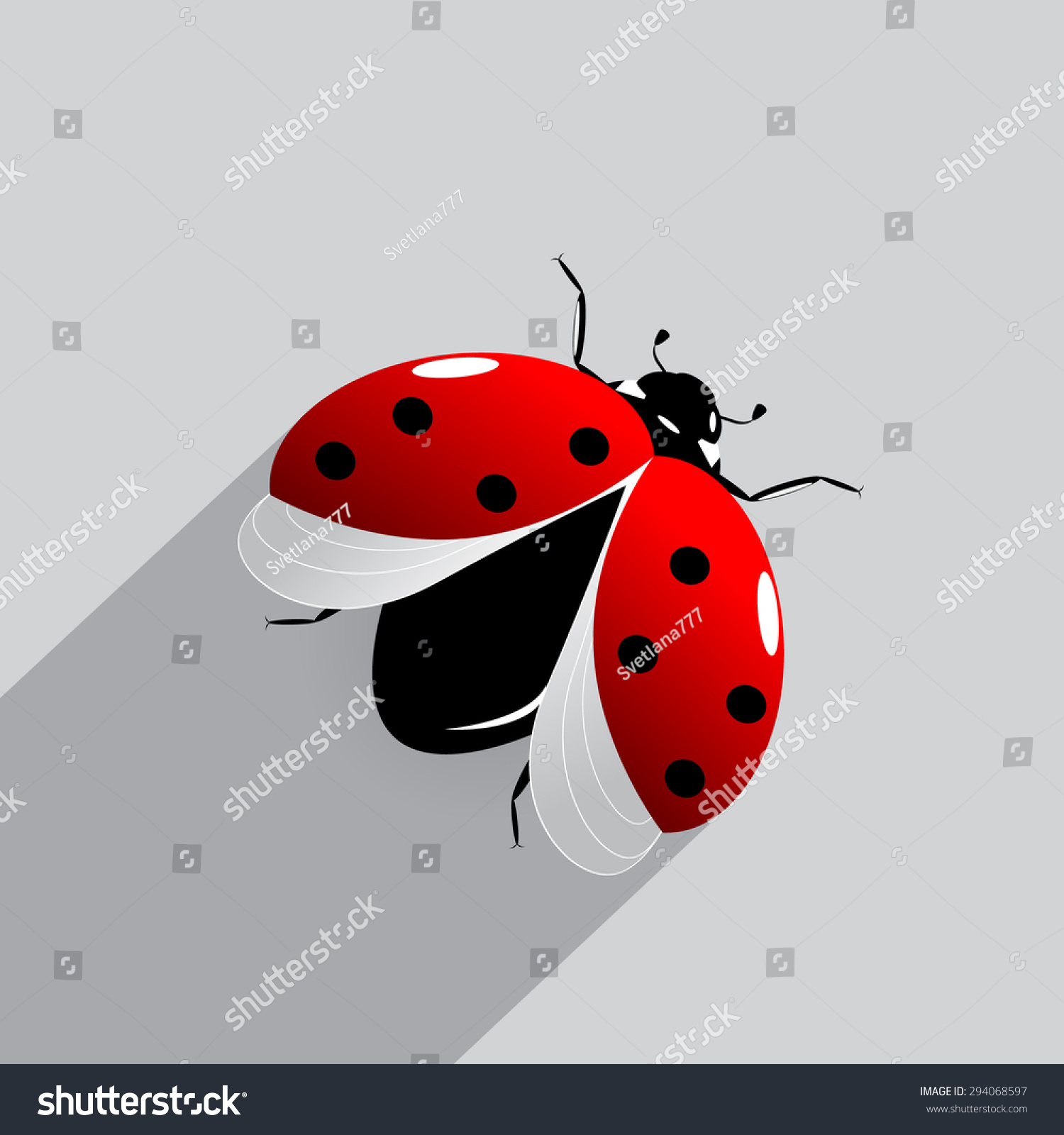 An insect of ladybird on a gray background | EZ Canvas