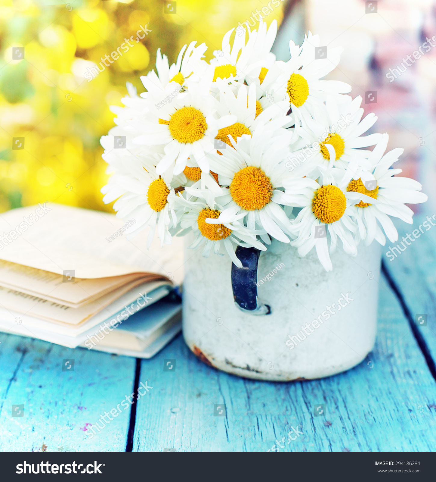 Summer beautiful daisy flowers book on stock photo image royalty summer beautiful daisy flowers with book on wooden background izmirmasajfo