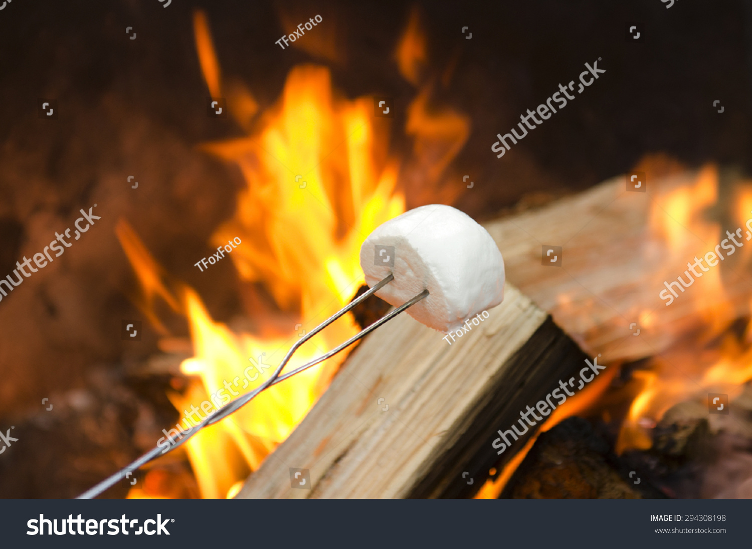 Roasting Marshmallows Over Open Campfire Smores Stock Photo Royalty Free 294308198